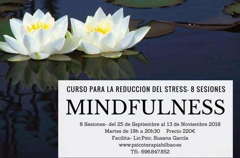 Curso Mindfulness Bilbao Reducción Stress 2018